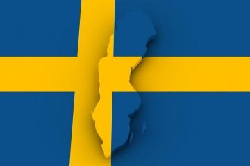 Support for Scandinavian Buyers in Marbella